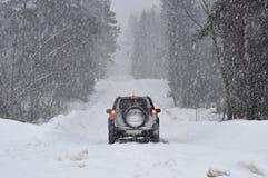 Carro na estrada na floresta na neve fotografia de stock royalty free