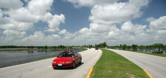 Carro na estrada no parque Imagem de Stock Royalty Free