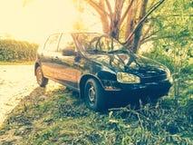 Carro na grama ao lado de uma árvore no dia ensolarado Fotos de Stock
