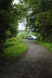 Carro na selva foto de stock