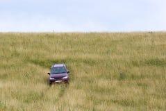 Carro no prado Imagens de Stock