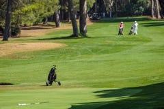 Carro para trazer os clubes de golfe no campo de golfe da vista Imagens de Stock