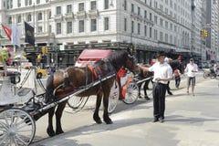 Carro parqueado del caballo por el Central Park Imagen de archivo libre de regalías