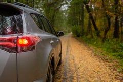 Carro pequeno de SUV no meio da estrada coberta com as folhas douradas da árvore do outono foto de stock