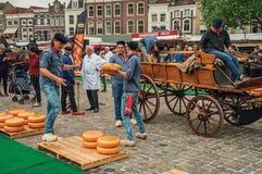 Carro que lleva de la gente joven con queso en el extremo de la feria de la plaza del mercado en Gouda Fotografía de archivo libre de regalías