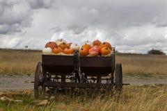 Carro rústico por completo de Autumn Pumpkins Imagen de archivo libre de regalías