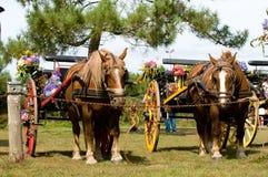 Carro retro com cavalo e flores imagem de stock
