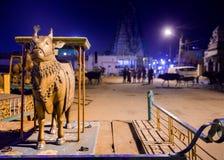 Carro santo de la vaca Foto de archivo