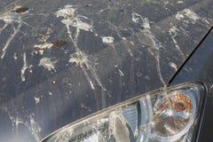 Carro sujo Foto de Stock