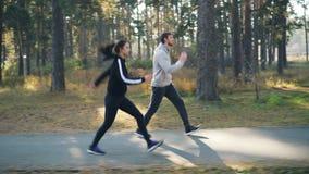 Carro tirado de los amigos alegres mujer y hombre que corren y que saltan en el parque que hace deportes y que sonríe junto Buen  almacen de video