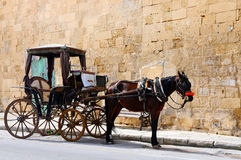 Carro traído por caballo Imágenes de archivo libres de regalías