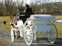 Carro traído por caballo Foto de archivo libre de regalías