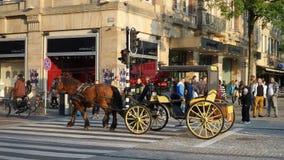 Carro traído por caballo Imagenes de archivo