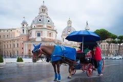 Carro traído por caballo Imagen de archivo libre de regalías