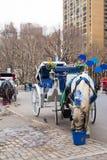 Carro traído por caballo de New York City Fotos de archivo