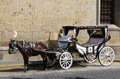 Carro traído por caballo en Guadalajara, México Fotografía de archivo