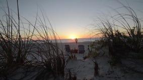 Carro a través de la hierba del mar a la puesta del sol del océano metrajes