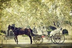 Carro turístico, Palma de Mallorca Fotografía de archivo libre de regalías
