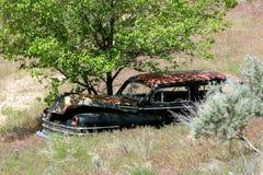 Carro velho abandonado escondido na grama alta fotografia de stock royalty free