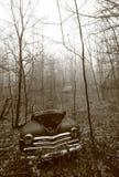 Carro velho deixado à podridão nas madeiras de New-Hampshire Fotografia de Stock