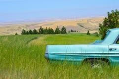 Carro velho no campo Imagem de Stock
