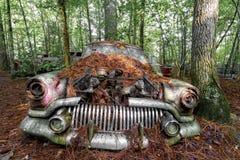 Carro velho oxidado na floresta imagem de stock royalty free