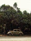 Carro velho sob árvores imagem de stock
