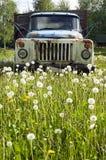 Carro viejo en concepto de la naturaleza Fotografía de archivo