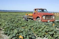 Carro viejo en la granja de la calabaza Imagenes de archivo