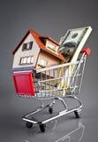 Carro y casa de compras Imagen de archivo libre de regalías