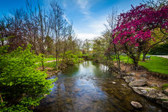 Carroll Creek at Baker Park, in Frederick, Maryland. Stock Photo
