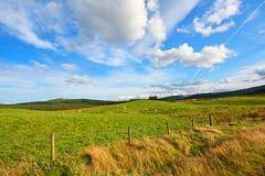 Carron Valley, Scotland, UK Royalty Free Stock Photo