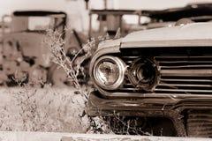 Carros abandonados Imagem de Stock Royalty Free