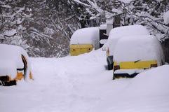 Carros abandonados na área rural Imagens de Stock Royalty Free