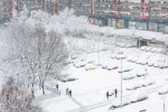 Carros cobertos na neve em um parque de estacionamento Foto de Stock