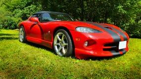 Carros de esportes luxuosos Imagem de Stock Royalty Free