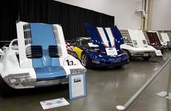 Carros de esportes velhos na feira automóvel Imagens de Stock