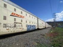 Carros de estrada de ferro de BNSF com grafittis fotografia de stock royalty free