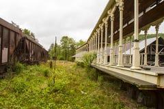 Carros de estrada de ferro em trilhas cobertos de vegetação Imagem de Stock