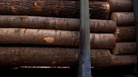 Carros de estrada de ferro carregados com o tronco de ?rvore recentemente visto filme