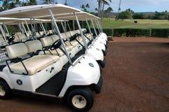 Carros de golfe tropicais 2 Imagem de Stock