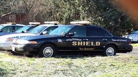 Carros de polícia Foto de Stock