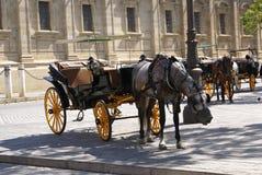 Carros del caballo delante de la catedral de Sevilla en España fotos de archivo libres de regalías
