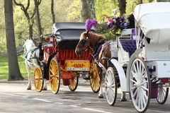 Carros del caballo en Central Park Foto de archivo libre de regalías