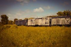 Carros del tren de carga abandonados en el campo Transporte de mercancías foto de archivo libre de regalías
