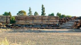 Carros del tren llenados de los registros del árbol de la madera de construcción foto de archivo libre de regalías