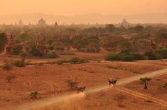 Bagan Myanmar, Burma Foto de Stock