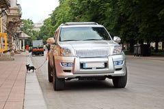Carros e seu vário close-up das peças nas ruas de Odessa, Ucrânia fotografia de stock royalty free