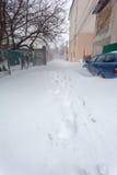 Carros estacionados cobertos na neve fresca Imagens de Stock Royalty Free