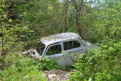 Carros no arbusto Fotos de Stock Royalty Free